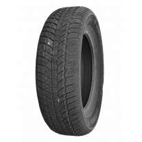 Anvelopa iarna 215/65/R16 98 Evergreen EW62